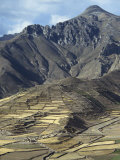 Landscape Including Inca Terraces in the Colca Canyon, Chivay, Peru, South America Photographic Print by Rennie Christopher