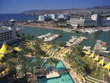 Eilat, with Modern Buildings in the Background, Israel, Middle East Photographic Print by Simanor Eitan