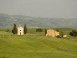 Cappella Di Vitaleta Near Pienza, Val D'Orcia, Siena Province, Tuscany, Italy Photographic Print by Pitamitz Sergio