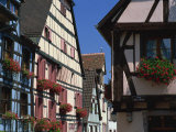 Colourful Timbered Houses, Riquewihr, Haut-Rhin, Alsace, France, Europe Photographic Print by Tomlinson Ruth