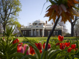 Thomas Jefferson&#39;s Monticello, UNESCO World Heritage Site, Virginia, USA Photographic Print by Snell Michael
