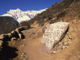 Mani Stones Printed with Tibetan Prayers Beside a Track in Solu Khumbu, Nepal Photographic Print by Wright Alison