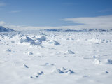 Pack Ice, Glacier, Spitsbergen, Svalbard, Norway, Scandinavia, Europe Photographic Print by Milse Thorsten