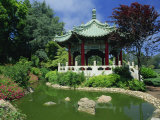 Chinese Pavilion by a Pond in the Golden Gate Park in San Francisco, California, USA Photographic Print by Tomlinson Ruth
