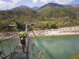 Man Carrying Vegetables across a Rope Bridge, Bandare Village, Trisuli Valley, Nepal Photographic Print by Jane Sweeney