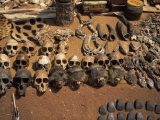 Primate Skulls for Sale in the Market at Vogan, Togo, West Africa, Africa Photographic Print by Pate Jenny