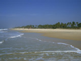 Colva Beach, Goa, India Photographic Print by Pate Jenny