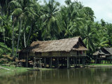 Hut on Stilts Beside the Kari Wari River, Papua New Guinea, Pacific Islands, Pacific Photographic Print by Sassoon Sybil