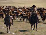 Two Cowboys on Horseback, Cattle Ranching, New Mexico, United States of America, North America Photographic Print by Woolfitt Adam