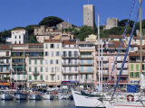 Le Suquet and the Harbour, Old Town, Cannes, Alpes Maritimes, Cote D'Azur, Provence, France Photographic Print by Thouvenin Guy