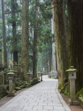 Entrance Path, Okunoin Graveyard, Site of 20000 Buddhist Gravestones, Koya-San, Honshu, Japan Photographic Print by Schlenker Jochen