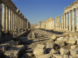 Cardo, Apamea, Syria, Middle East Photographic Print by Simanor Eitan