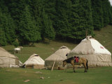 Yurts and Horses Near Lake Tianche in Xinjiang Province, China Photographic Print by Jane Sweeney