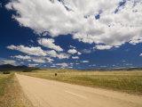 Farmland, Nariel Creek, Victoria, Australia, Pacific Photographic Print by Schlenker Jochen