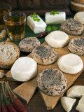 Maltese Goat Cheese, Malta, Europe Lámina fotográfica por Tondini Nico