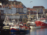 Fishing Fleet in Harbour, Whitby, North Yorkshire, England, United Kingdom, Europe Photographic Print by Waltham Tony