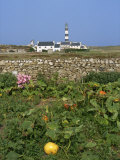 Creac'H Lighthouse, Ouessant Island, Finistere, Brittany, France, Europe Photographic Print by Thouvenin Guy