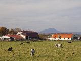 Farm, Hokkaido, Japan Photographic Print by Schlenker Jochen