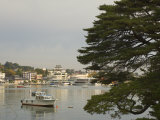 Matsushima Bay, Northern Honshu, Japan Photographic Print by Schlenker Jochen