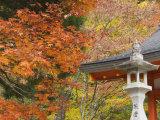 Eireiden Temple, Koya-San, Kansai, Honshu, Japan Photographic Print by Schlenker Jochen