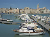 Boats in the Harbour, Trani, Puglia, Italy Photographic Print by Terry Sheila