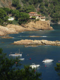 Rocky Coastline, Aiguablava, Costa Brava, Gerona, Cataluna, Spain, Mediterranean, Europe Photographic Print by Tomlinson Ruth