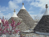 Conical Rooftops of Trulli Near Martina Franca in Puglia, Italy, Europe Photographic Print by Terry Sheila