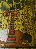 Pashedu Praying under a Palm Tree, Tomb of Pashedu, West Bank, Thebes, Egypt Photographic Print by Schlenker Jochen