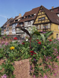 Quai De La Poissonnerie, Colmar, Alsace, France, Europe Photographic Print by Thouvenin Guy
