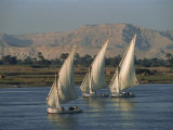 Three Feluccas Sailing on the River Nile, Egypt, North Africa, Africa Photographic Print by Thouvenin Guy