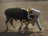 Cowboy Wrestling a Cow, New Mexico, United States of America, North America Photographic Print by Woolfitt Adam