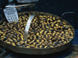Roast Chestnuts for Sale in Piazza Di Trevi, Rome, Lazio, Italy, Europe Photographic Print by Tomlinson Ruth