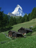 Matterhorn Towering Above Green Pastures, Zermatt, Valais, Switzerland Photographic Print by Tomlinson Ruth