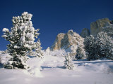 Passo Sella in the Val Di Fassa in Winter, the Dolomites, Italy Photographic Print by Teegan Tom