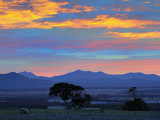 Sunrise, Stirling Range, Stirling Range National Park, Western Australia, Australia, Pacific Photographic Print by Schlenker Jochen