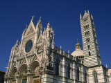 Cathedral, Siena, Tuscany, Italy, Europe Photographic Print by Short Michael