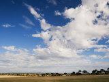 Countryside, Corrigin, Western Australia, Australia, Pacific Photographic Print by Schlenker Jochen