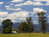 Farmland, Butchers Ridge, Victoria, Australia, Pacific Photographic Print by Schlenker Jochen