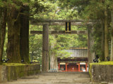 Stone Torii, Tosho-Gu Shrine, Nikko, Central Honshu, Japan Photographic Print by Schlenker Jochen