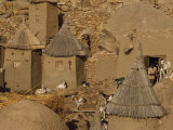 Goats and Grain Store in Dogon Village, Bandiagara Escarpment, Mali, West Africa, Africa Photographic Print by Poole David