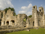 Wolvesley Castle, Winchester, Hampshire, England, United Kingdom, Europe Photographic Print by Richardson Rolf