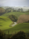 Rangiwahia Road, Winding Through Sheep Pasture in Rural Manawatu, North Island, New Zealand Photographic Print by Smith Don