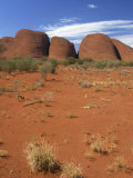 Olgas, Uluru-Kata Tjuta National Park, Northern Territory, Australia, Pacific Photographic Print by Pitamitz Sergio
