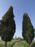 Pienza, Val D'Orcia, Siena Province, Tuscany, Italy, Europe Photographic Print by Pitamitz Sergio
