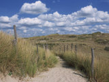 Dunes, Le Touquet, Nord Pas De Calais, France, Europe Photographic Print by Thouvenin Guy