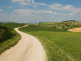 Countryside Near Montepulciano, Val D'Orcia, Siena Province, Tuscany, Italy, Europe Photographic Print by Pitamitz Sergio
