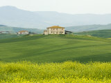 Countryside Near San Quirico D'Orcia, Val D'Orcia, Siena Province, Tuscany, Italy, Europe Photographic Print by Pitamitz Sergio