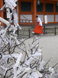 Fate and Wish Papers, Heian Jingu Shrine, Kyoto, Kansai, Honshu, Japan Photographic Print by Simanor Eitan
