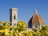 Duomo , Florence, UNESCO World Heritage Site, Tuscany, Italy, Europe Photographic Print by Tondini Nico