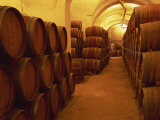 Barrels in Wine Cellar, Badia a Passignano Cave Antinos, Chianti, Tuscany, Italy, Europe Photographic Print by Morandi Bruno